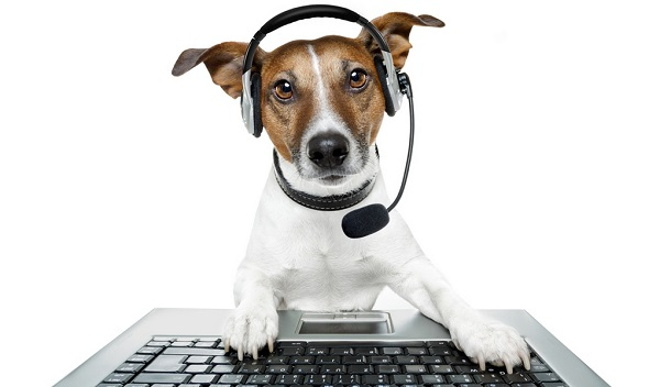 Pet Podcasts of 2018